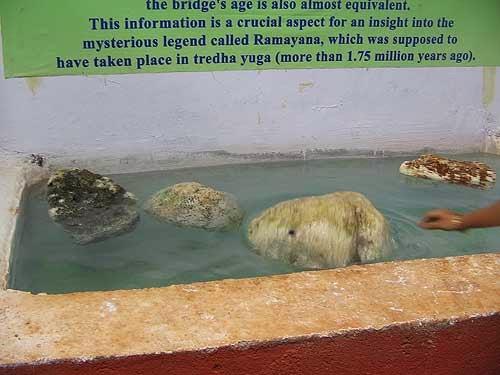 Floating Stones Of Ram Setu Bridge At Rameswaram