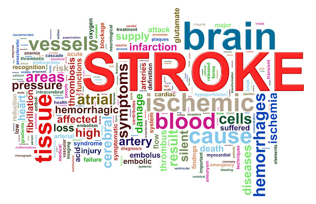 foods to eat for stroke recovery, life after stroke, reduce the risk of stroke, healthy recovery after stroke, stroke, eating well after a stroke, fruits and vegetables, dietician, recovery after stroke, risk of stroke, cholesterol, sodium, potassium