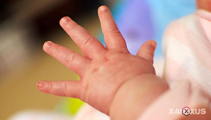 Fakta 4 - Janin 9 minggu dapat melenturkan pergelangan tangan