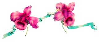 border digital daffodil download image
