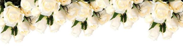 Белые розы любимым. Поздравление в блоге.