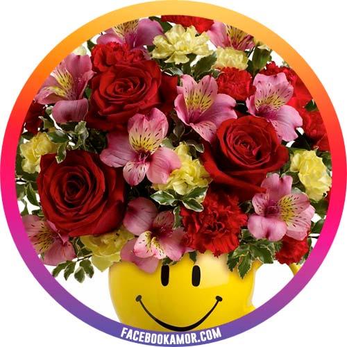 fotos de flores para perfil