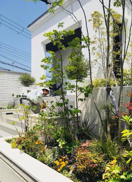 植栽工事「2年目の植え替え&補植」