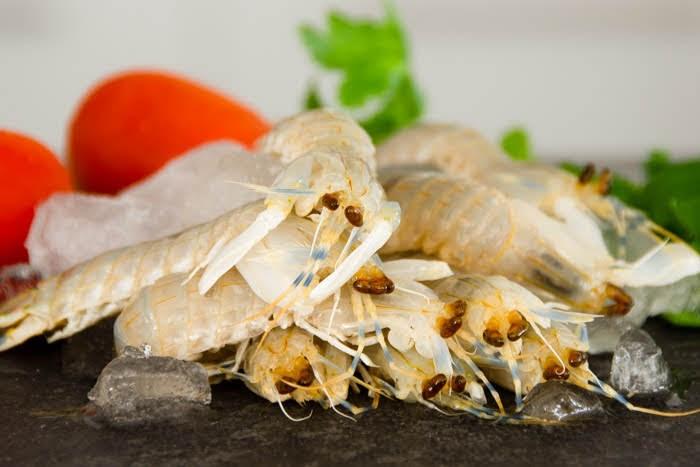 Fresh mantis prawns