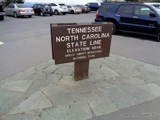 state line in Great Smoky Mountains National Park