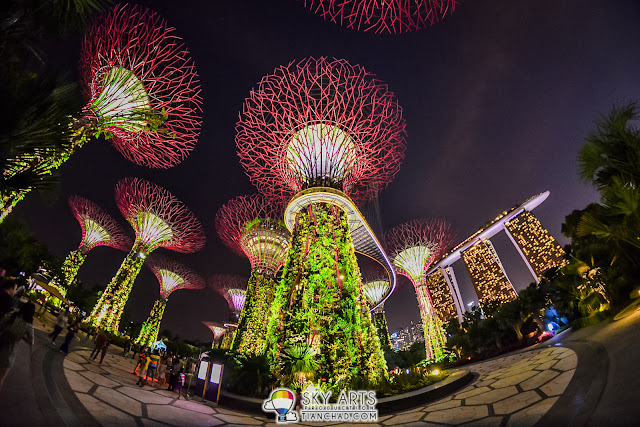 Gardens by the bay night light show