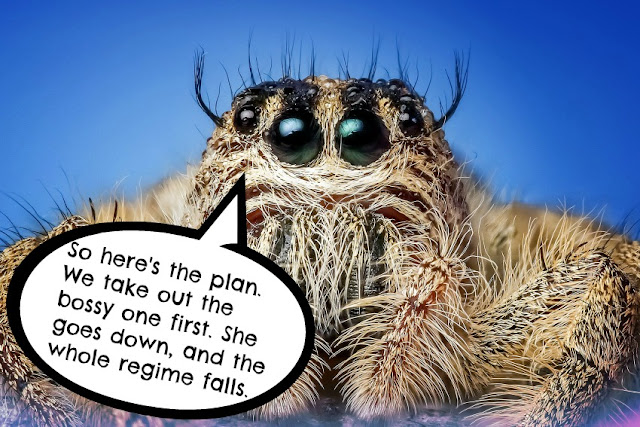 Giant spider planning to take out housewife.