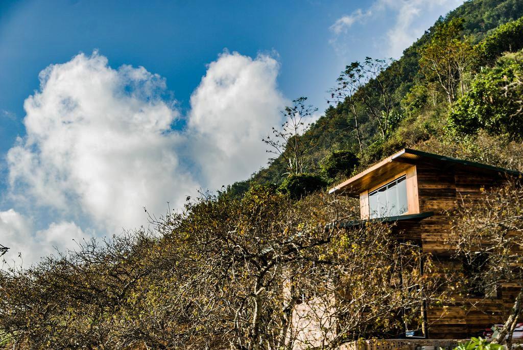 V House Homestay Mộc Châu lọt thỏm giữ thung lũng hoa mận thơ mộng