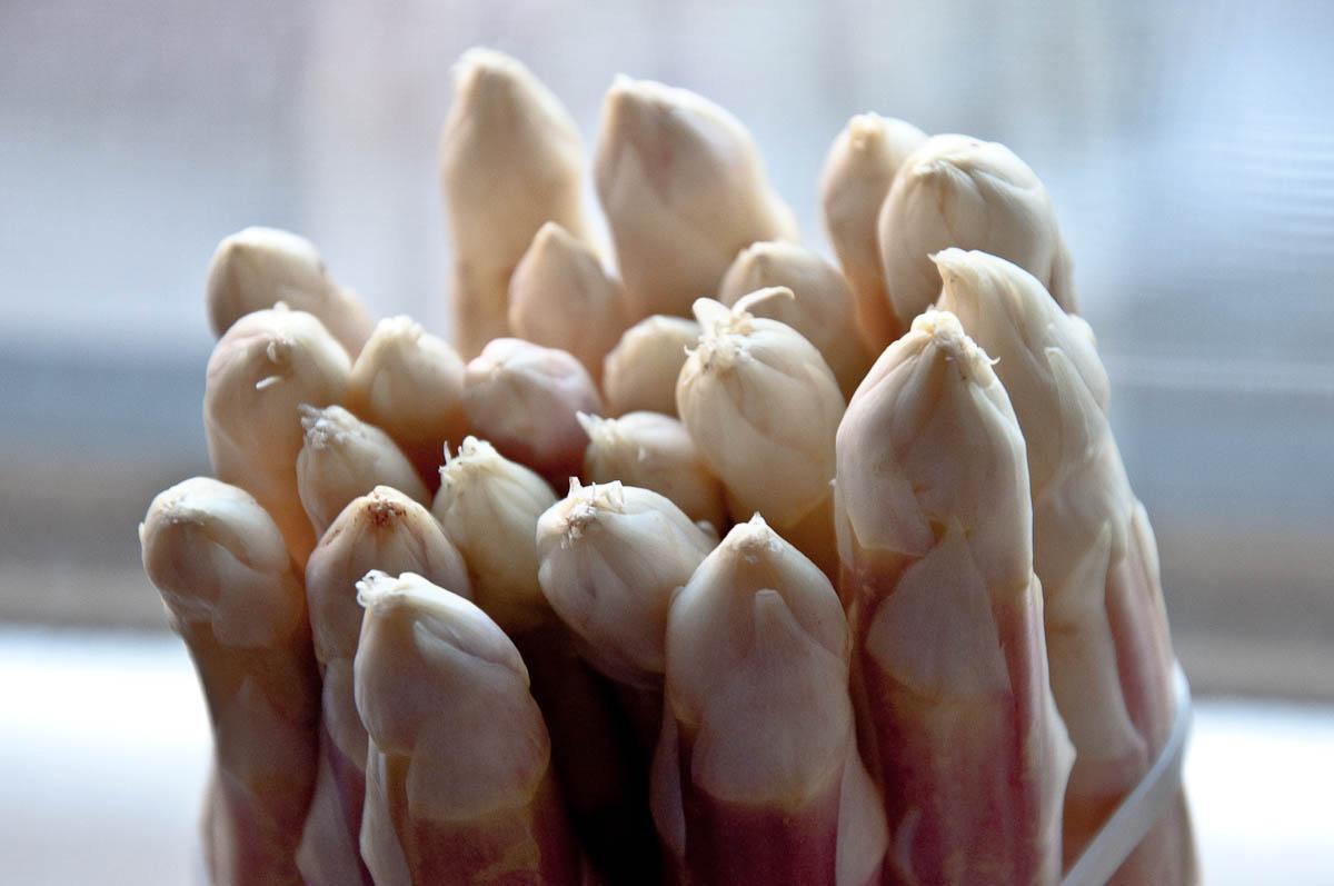 White asparagus spears on my windowsill, Vicenza, Veneto, Italy