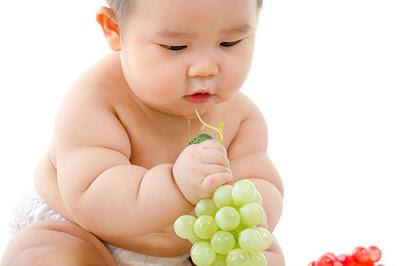 Obesitas Pada Bayi