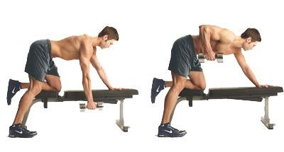 Lukitoys Alat Alat Fitnes Di Gym Dan Kegunaannya