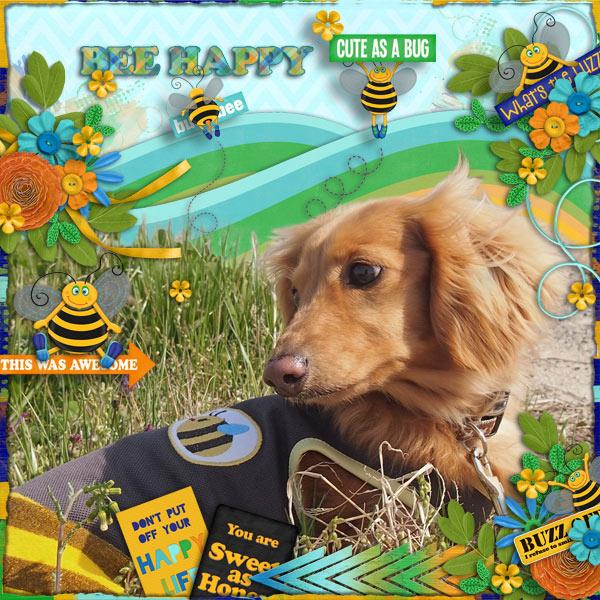 DSB  Bee Happy