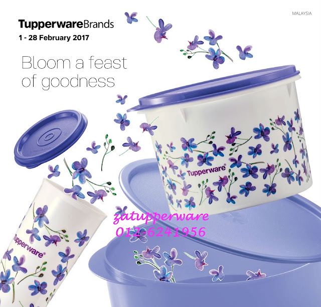 Tupperware Mini Catalogue 1st February - 28th February 2017