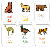Arabic vocabulary animal flashcards