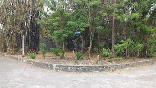 Tanah Dijual Yogyakarta, Tanah Dijual Jogja Utara, Tanah Dijual Kaliurang Jogja, Tanah Dijual Tiyasan Yogyakarta