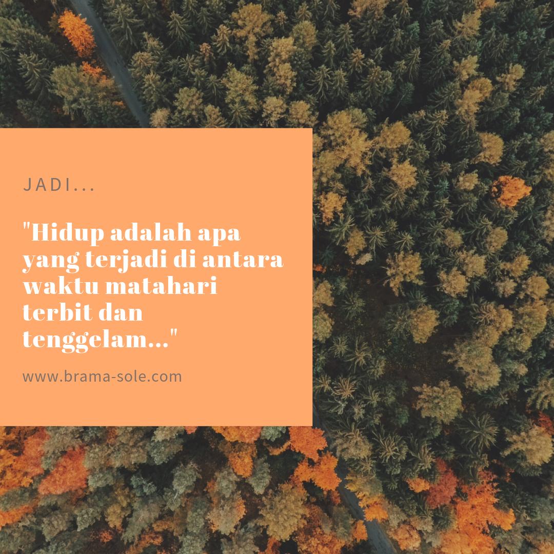 Quote Bramasole