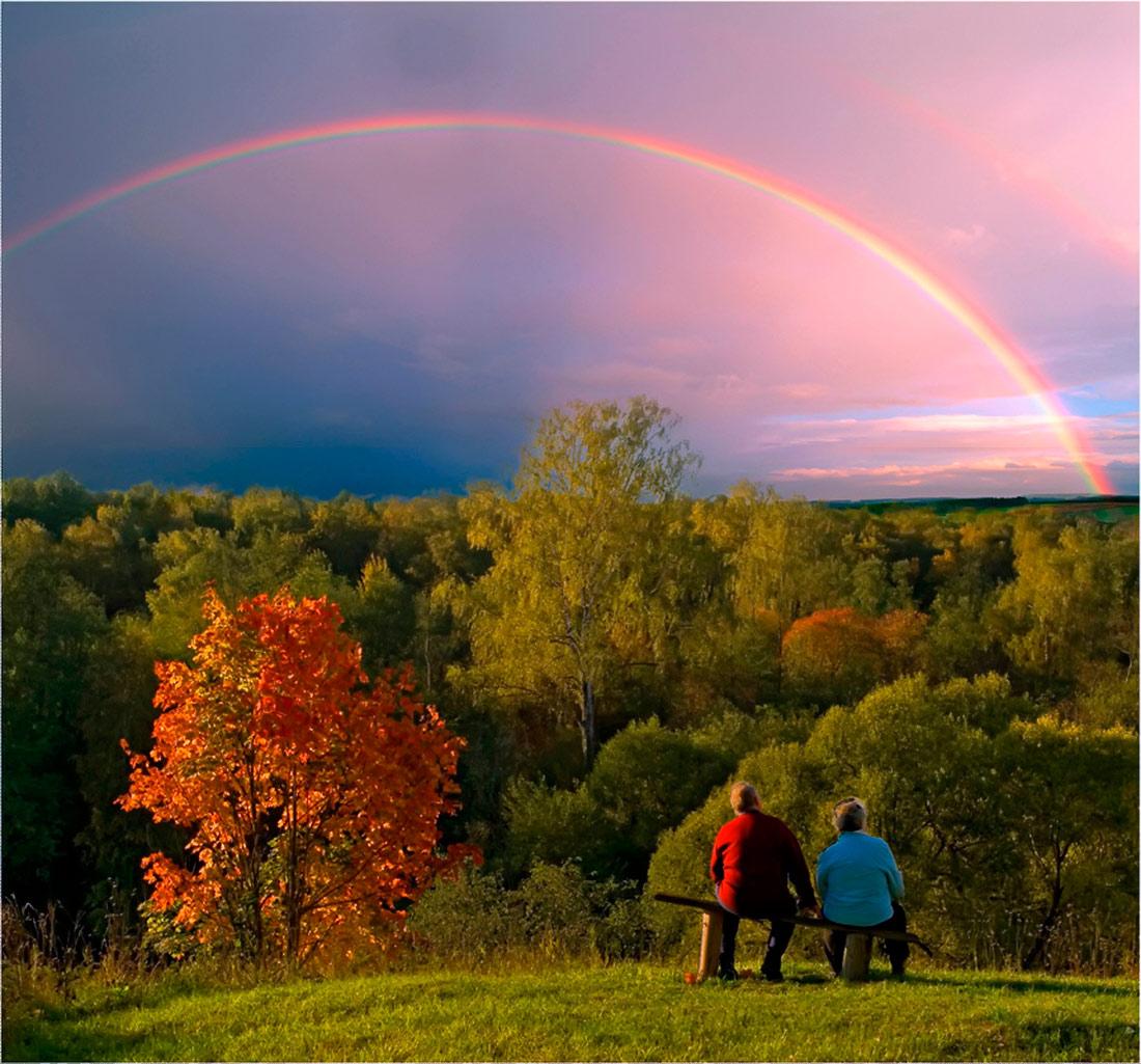 правильно подобрать осенняя радуга фото стихи также номинирована