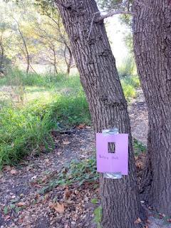 (PDF) Ecotypic and genetic variation in poplar bark ...