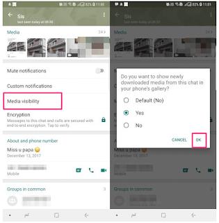 Begini Cara Menyembunyikan Foto dan Video WhatsApp dengan  Fitur Visibilitas Media Di Galeri Android