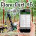 Florescast #6 - Tecnologias para Inventário Florestal