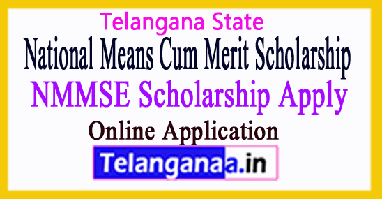 NMMSE National Means Cum Merit Scholarship Examination Online