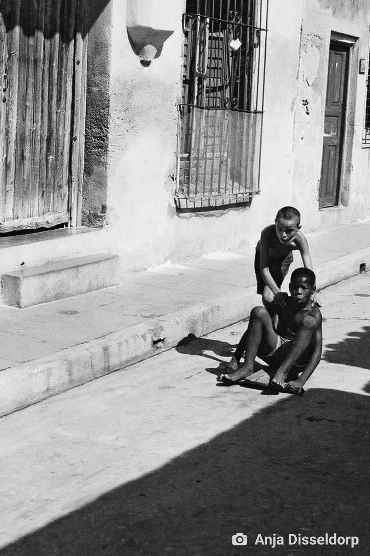 ambiente de leitura carlos romero nelson barros berlim pieta mae com filho morto civis mortos segunda guerra