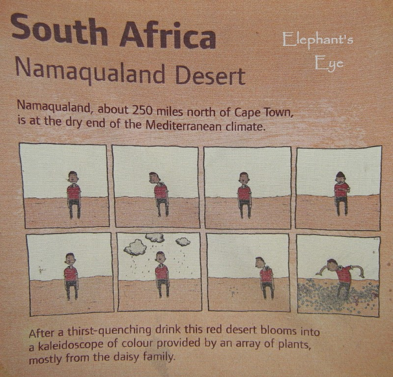 The Eden Project on Namaqualand