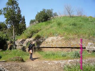 necropole etrusca cerveteri guia De Roma portugues - Mitos e realidade sobre conhecer Roma