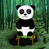 BigEscapeGames Bamboo Forest Panda Rescue