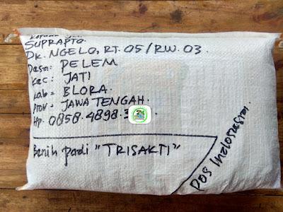 Benih pesana    SUPRAPTO Blora, Jateng.   (Sesudah Packing)