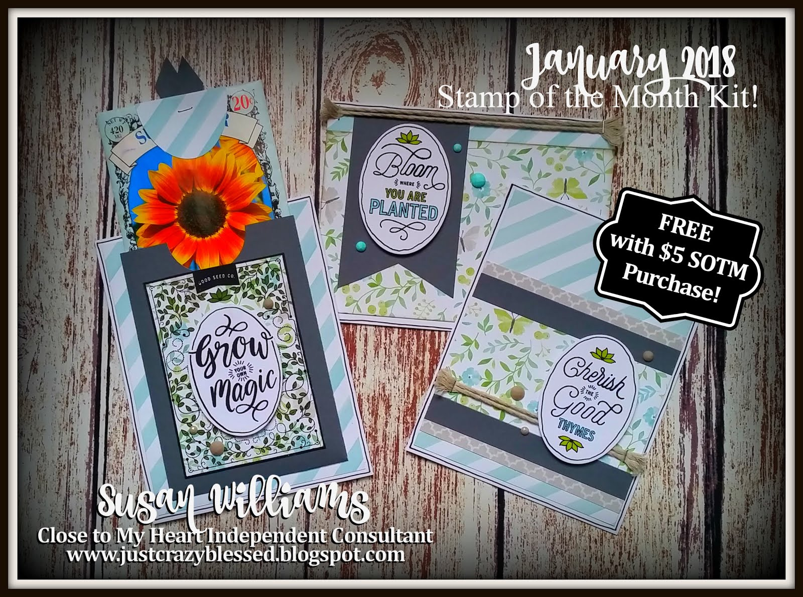 January Stamp of the Month Card Kit! With Interactive Pocket design space file!