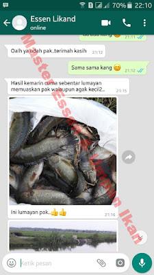 Umpan Serbuk Ikan Nila Top Seller