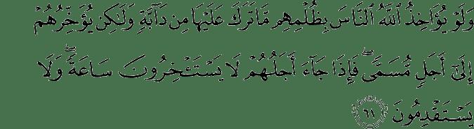 Surat An Nahl Ayat 61