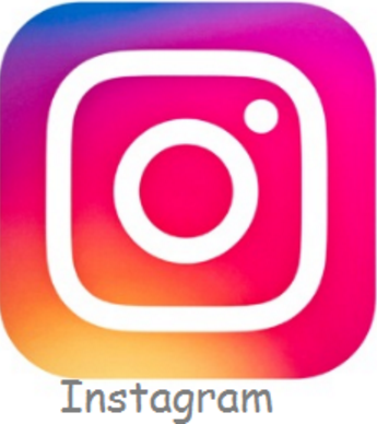 Clear Instagram Search