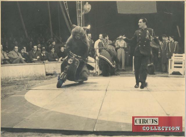 Ours à moto au Cirque  Darix Togni 1954