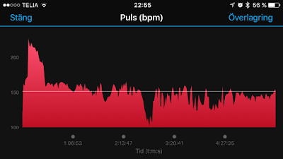puls%2Bvasaloppet.PNG