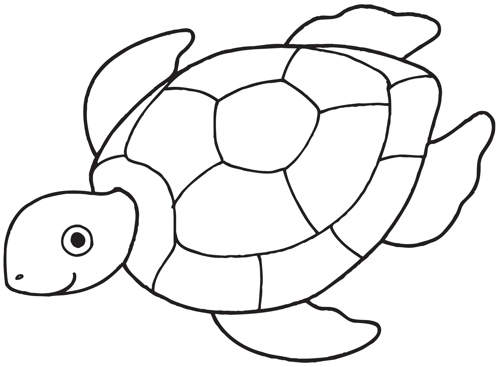 Sea Turtle Template Photo 1