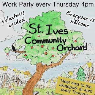 St Ives Community Orchard - Work Party