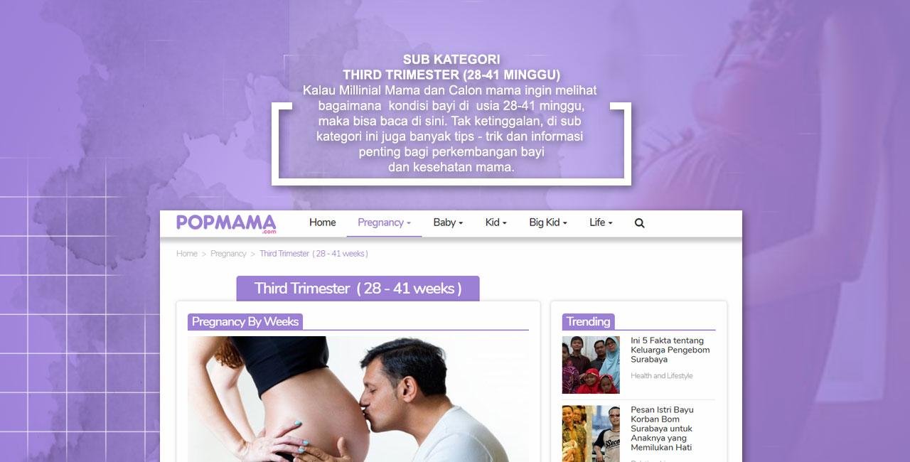Third Trisemester Pregnancy