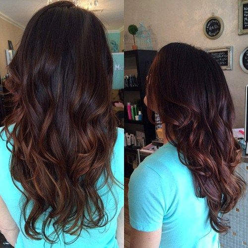 chestnut brown copper highlights