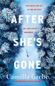 https://www.goodreads.com/book/show/43188400-after-she-s-gone