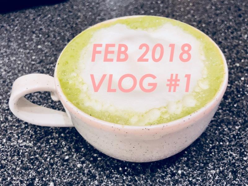 February 2018 Vlog