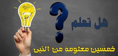 هل تعلم عن النبي والمولد النبوي 50 معلومة سؤال وإجابة