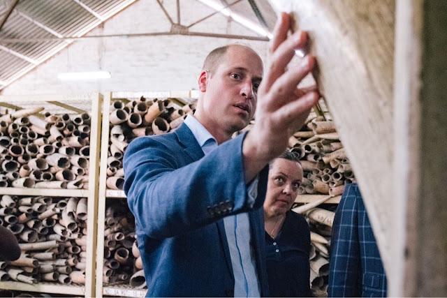 Książę William uruchomił nowy projekt United for Wildlife