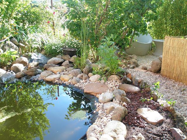 La br jula de los 8 calderos reforma del estanque 2 parte for Oxigenacion del agua en estanques
