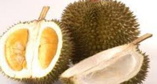 Bolehkah Ibu Hamil Makan Buah Durian