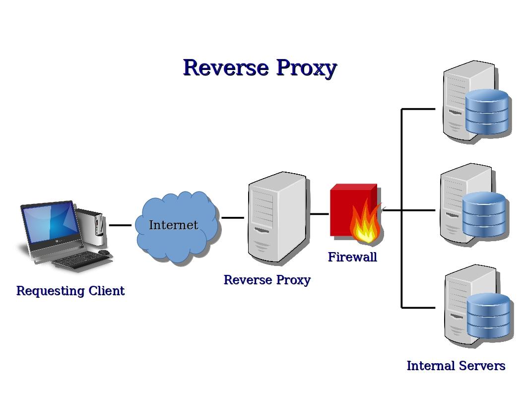 How Do Proxy Servers Work