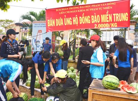 Quảng Ngãi Dưa hấu rớt giá 1.000 đồng/kg sinh viên bán giúp nông dân