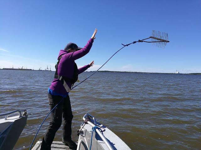 Henkilö heittää haran veteen veneestä.