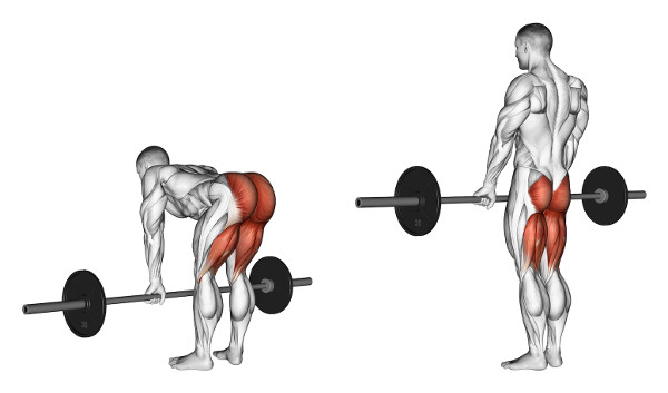 How To Do The Deadlift & 7 Week Deadlift Workout